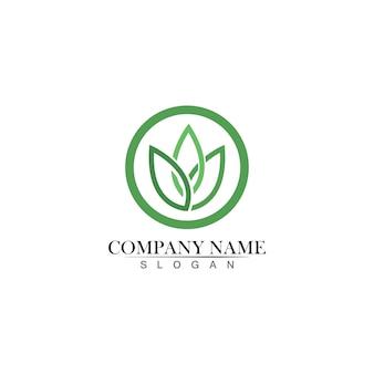 Design de logotipo de vetor de folha de árvore, conceito ecológico
