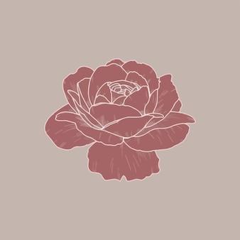 Design de logotipo rosa rosa blush, ilustração vetorial simples e estilizada