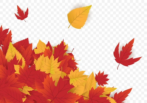 Design de modelo de fundo outono com maple leafs
