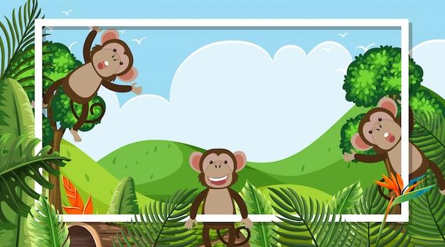 Design de moldura com macacos bonitos na floresta