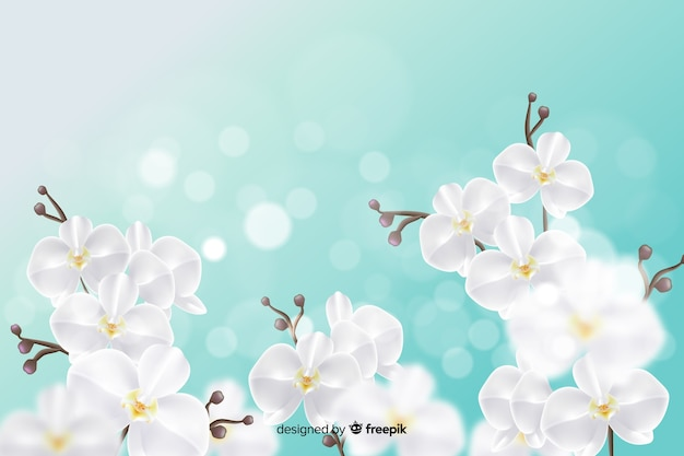 Design de papel de parede com flores realistas