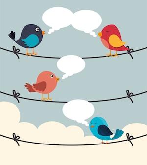 Design de pássaro, ilustração vetorial.