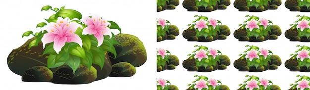 Design de plano de fundo sem emenda com flores de lírio rosa nas rochas