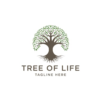 Design do logotipo da árvore familiar da vida