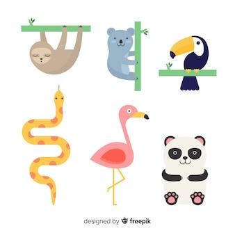 Design plano de coleção animal tropical