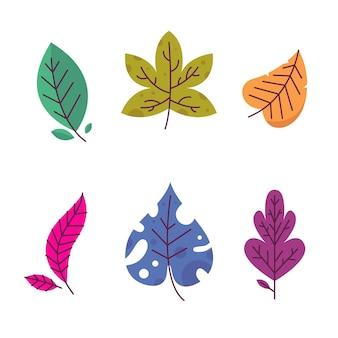 Design plano de coleção de folhas coloridas