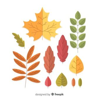 Design plano de coleção de folhas de outono