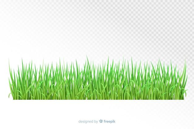 Design realista de fronteira de grama verde