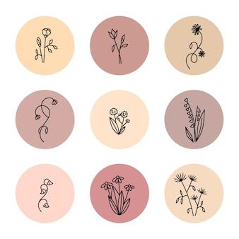 Destaque da história com flores desenhadas à mão em fundo bege