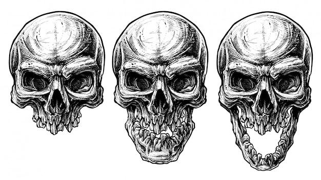 Detalhadas de crânio humano gráfico lixo polka linha arte