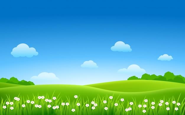 Dia de sol no lindo campo verde com flores e arbusto