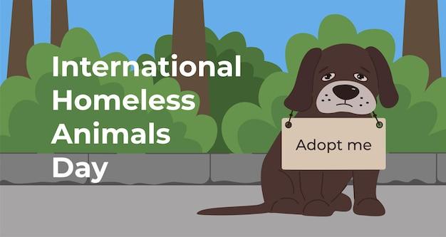 Dia internacional dos animais desabrigados
