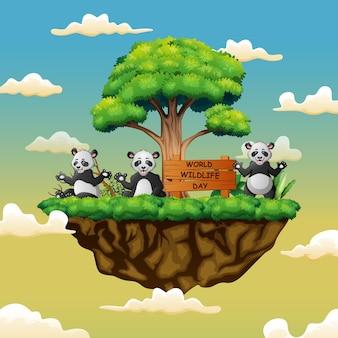 Dia mundial da vida selvagem com os três pandas na ilha
