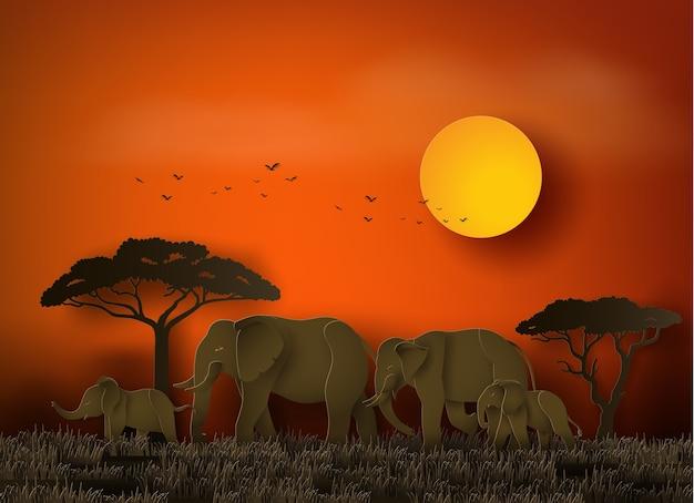 Dia mundial dos elefantes