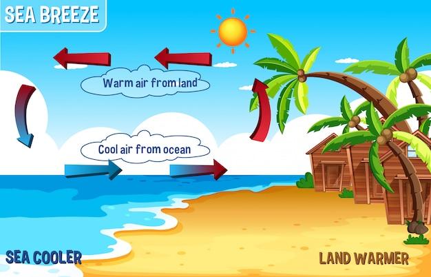 Diagrama da brisa do mar com terra e água