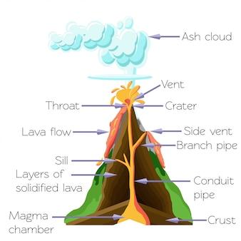 Diagrama da seção dos cros do vulcão isolado no fundo branco.