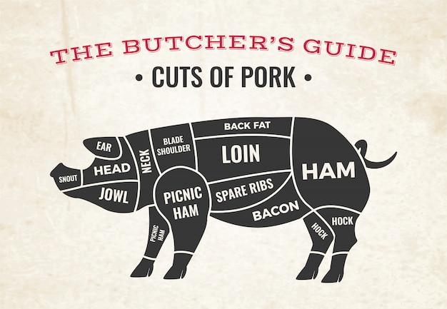 Diagrama de açougue com silhueta de porco e cortes de carne de porco em papel velho