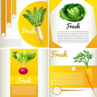 Diagrama de infográfico com legumes frescos