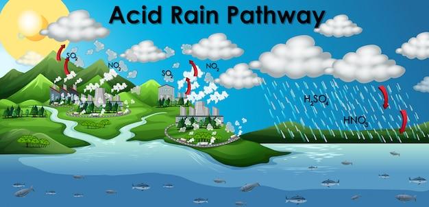 Diagrama mostrando o caminho da chuva ácida