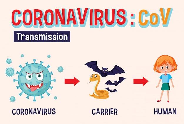 Diagrama mostrando o coronavírus e a transmissão da doença