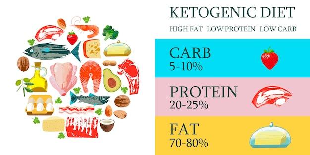 Dieta cetogênica. um amplo conjunto de produtos para a dieta cetônica. ilustração vetorial com textura desenhada de mão única. carne, peixe, vegetais, óleos, nozes, ovos. cartaz colorido com produtos diferentes.