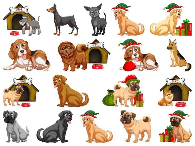 Diferentes cães engraçados em estilo cartoon, isolado no fundo branco