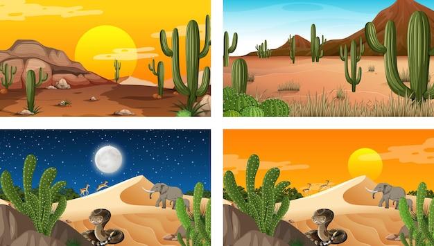Diferentes cenas da floresta do deserto com animais e plantas