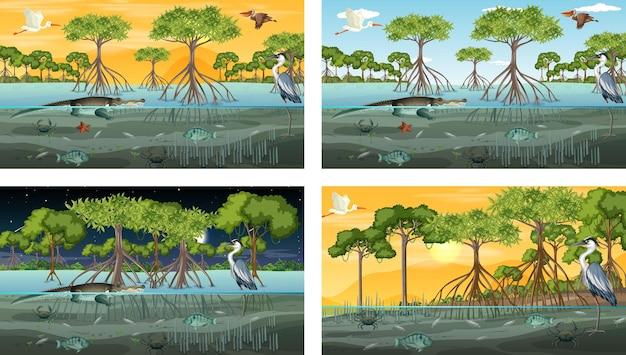 Diferentes cenas de paisagem de floresta de mangue com animais e plantas