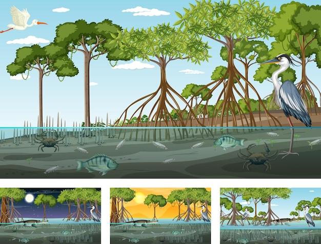 Diferentes cenas de paisagem de floresta de mangue com animais