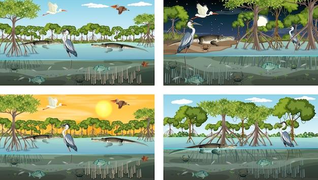 Diferentes cenas de paisagem de floresta de mangue com vários animais