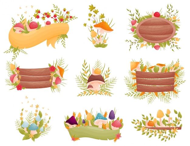 Diferentes composições de cogumelos e flores. com caracóis e placas de madeira.