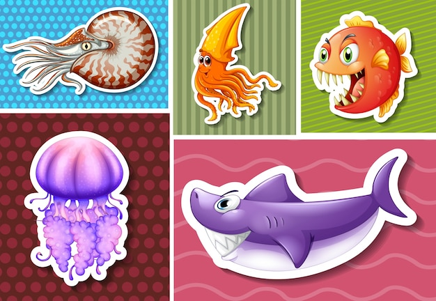 Diferentes tipos de animais marinhos