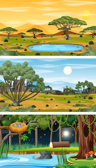 Diferentes tipos de cenas horizontais de floresta