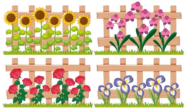 Diferentes tipos de flores no jardim