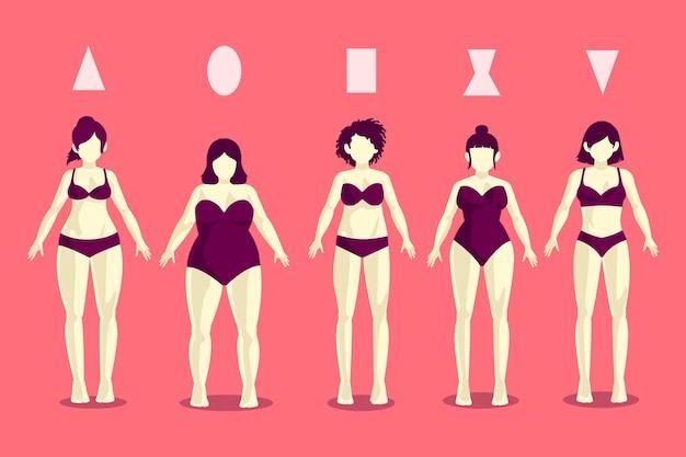 Diferentes tipos de formas do corpo feminino