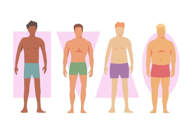 Diferentes tipos de formas do corpo masculino