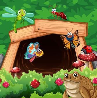 Diferentes tipos de insetos na frente do túnel