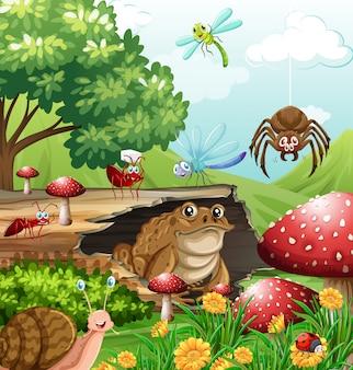 Diferentes tipos de insetos no jardim durante o dia
