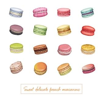 Diferentes tipos de macarons mão ilustrações desenhadas