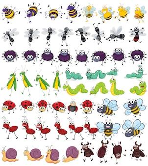 Diferentes tipos de pequenos insetos