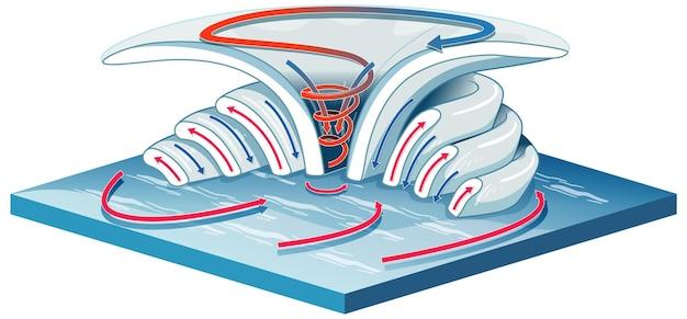 Digram mostrando a formação de vórtices para educação
