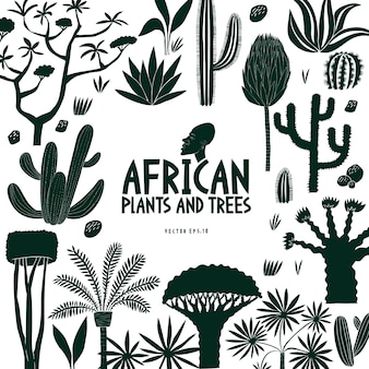 Diversão mão desenhada plantas africanas e árvores