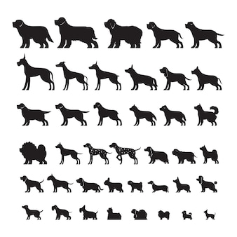 Dog breeds side view, silhouette set