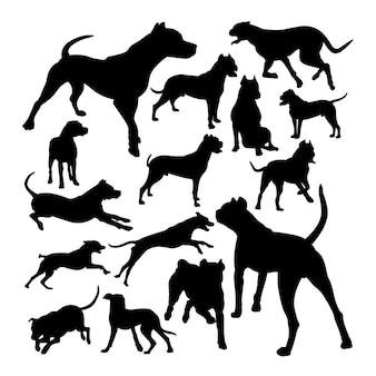 Dogo argentino dog animal silhouettes