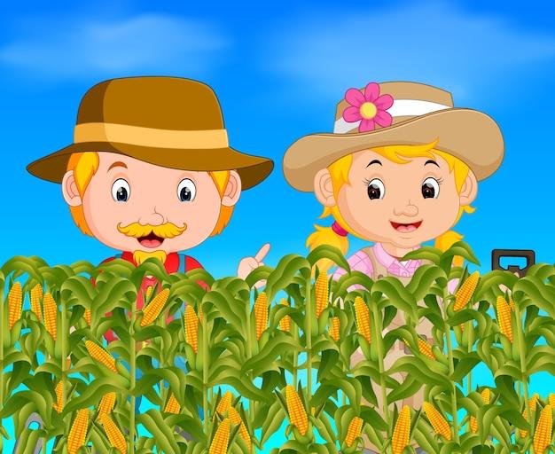 Dois agricultores em um campo de milho