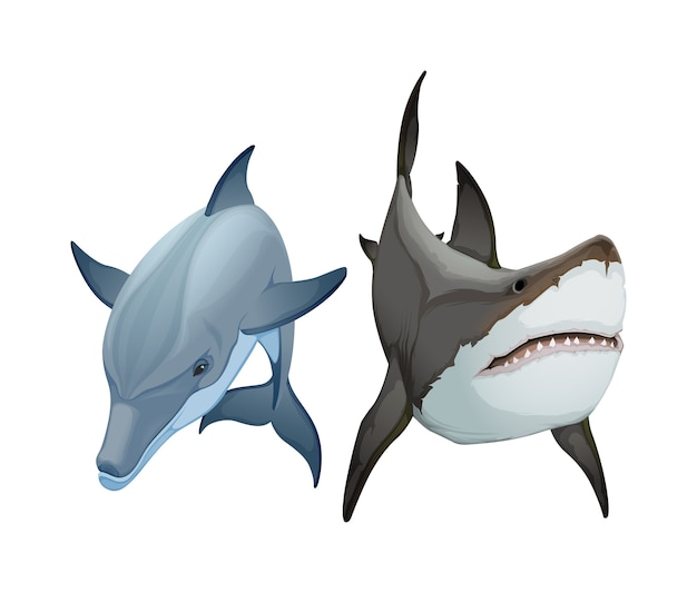 Dois animais, golfinhos e tubarões.