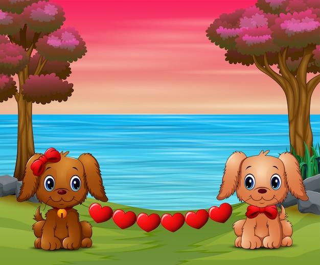 Dois cães bonitos mordem o coração na floresta