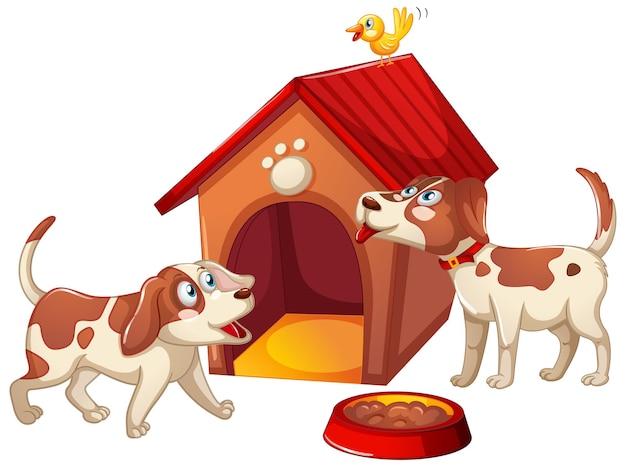 Dois cães com casinha de cachorro isolada no branco