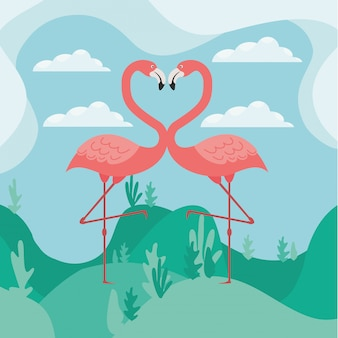 Dois flamingos apaixonados