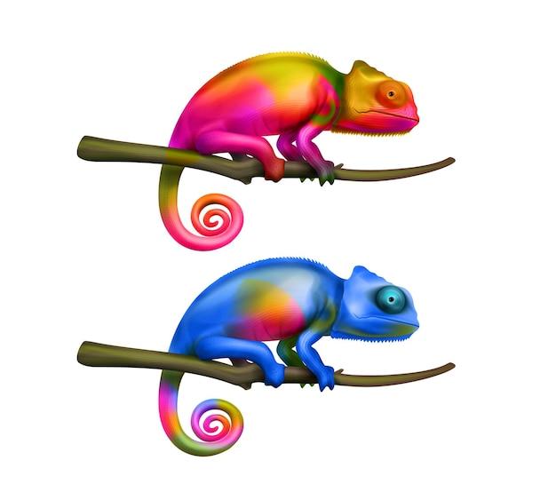 Dois lagartos camaleões coloridos e brilhantes sentados nos galhos de uma árvore.